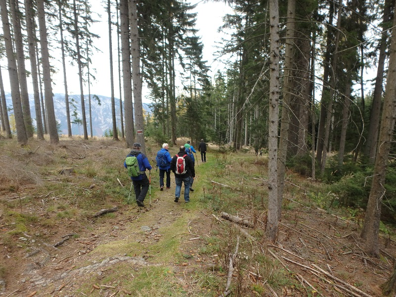You are browsing images from the article: 3. Feuerwehrwandertag der FF Payerbach